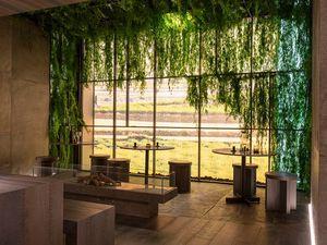 GREENAREA -  - Bepflanzte Wand