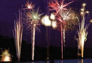 BUNY -  - Feuerwerk