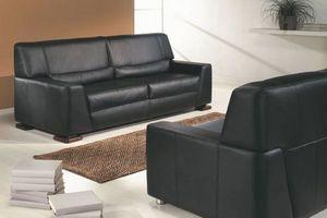 Belgofurn-Flandres - daphne - Sofa 2 Sitzer