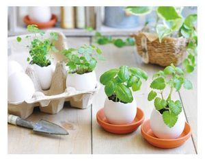 NOTED -  - Gartenarbeit Kit
