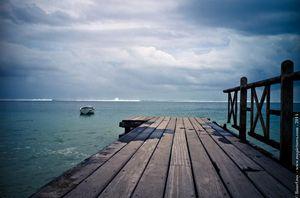 LIONEL ROY -  - Fotografie