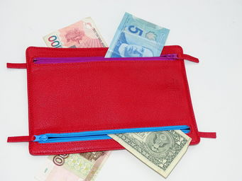 MIDIPY - voyages - Brieftasche