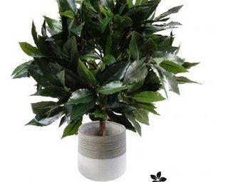 NestyHome - laurier - Künstlicher Baum