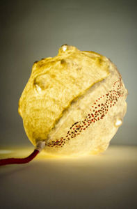 SOPHIE LULINE - solena 1 - Leuchtobjekt