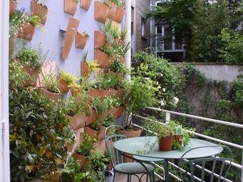 Espace Buffon - mur végétal - Bepflanzte Wand