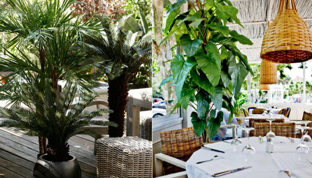 Euroflor Planta artificial Árboles & plantas Flores y Fragancias  |