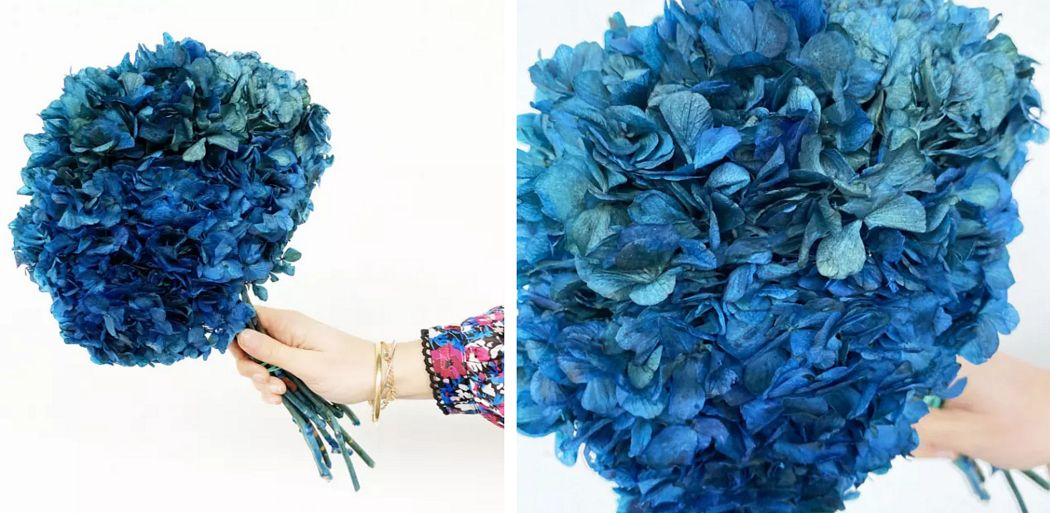 FRANCE FLEURS Flor estabilizada Composiciones florales Flores y Fragancias  |