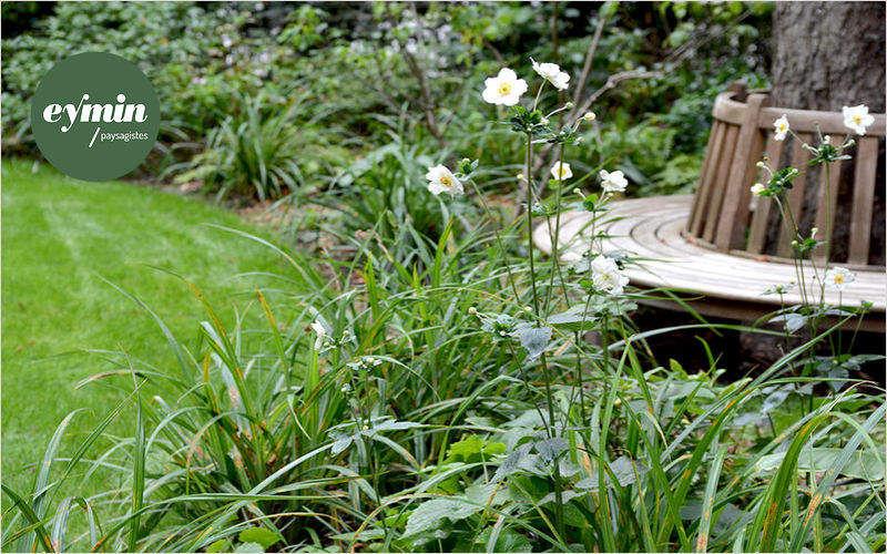 MATHIEU EYMIN Jardín paisajístico Creación de jardines Jardín Diverso  |