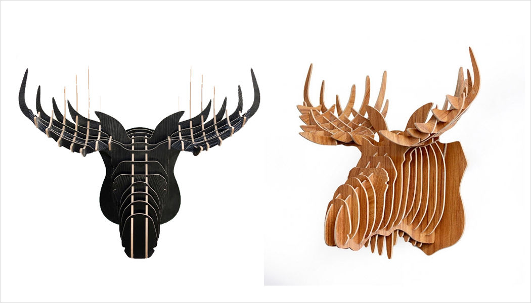 Artwall and CO Trofeo de caza Taxidermia y trofeos de caza Ornamentos Entrada | Lugares exóticos