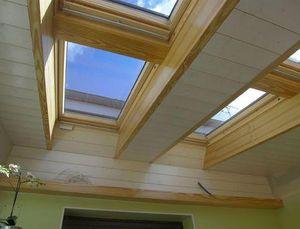 Concept 3000 Ventana de tejado