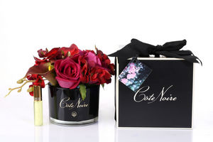 COTE NOIRE -  - Flor Estabilizada