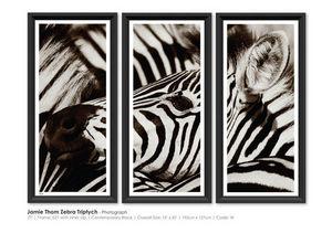 TROWBRIDGE - jamle thom zebra triptych - Fotografía
