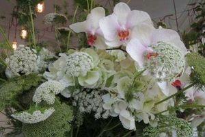 ROSEBUD FLEURISTES -  - Composizione Floreale