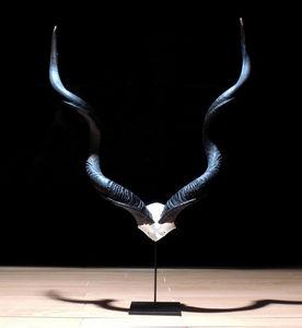 Galerie Luc Berthier -  - Trofeo