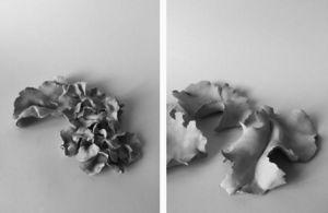 LAUREN COLLIN -  - Scultura