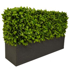 Hedged In -  - Siepe Artificiale